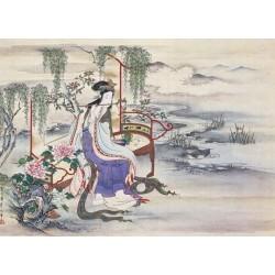 Puzzle 1000 pièces - The beautiful chinese yang guifel un jeu Ricordi