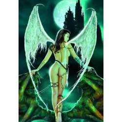 Puzzle 1000 pièces - Del Nido - Nocturnal angel un jeu Ricordi