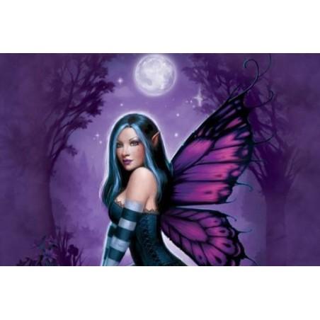 Puzzle 1000 pièces - Ryman - Night Fairy un jeu Ricordi