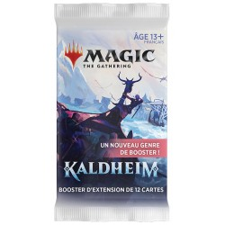 Magic - Kaldheim - Booster d'extension