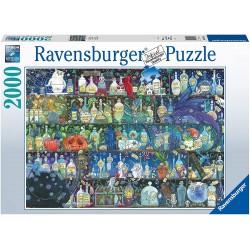 Puzzle 2000 pièces - L'étagère à potions