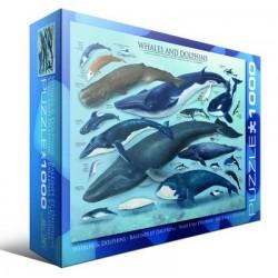Puzzle 1000 pièces - Baleines et Dauphins