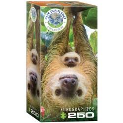 Puzzle 250 pièces - Save our Planet Collection - Paresseux