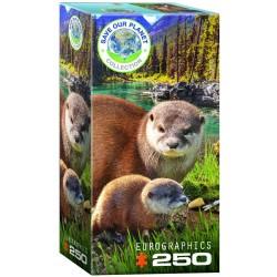 Puzzle 250 pièces - Save our Planet Collection - Loutres