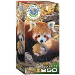 Puzzle 250 pièces - Save our Planet Collection - Panda Roux