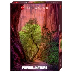 Puzzle 1000 pièces - Power of Nature - Singing Canyon