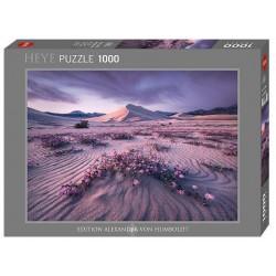 Puzzle 1000 pièces - Arrow Dynamic